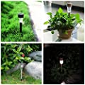 Solar Lights for Garden Solar Powered Pathway Lights Landscape Lighting for Lawn/Patio/Yard/Walkway/Driveway Stainless Steel 10-Pack