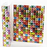 3D Design Binder with 2 Portfolio folders (Square Rainbow Set)