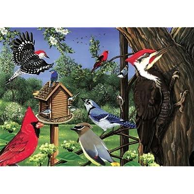 Around The Birdfeeder: Toys & Games