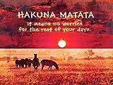 HAKUNA MATATA NO WORRIES AFRICA QUOTE MOTIVATION TYPOGRAPHY ART 12x16 '' POSTER QU254B