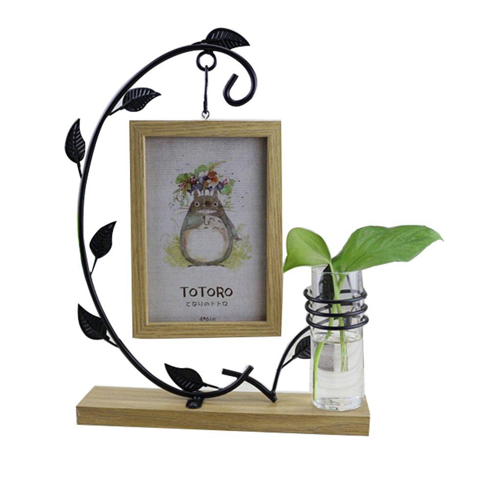 Ireav Wood Hanging Photo Frame Micro landscape Multifunction Creative Hydroponic Bottls Living Room Decor Glass Retro Vase