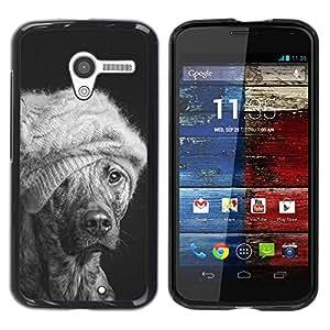 Be Good Phone Accessory // Dura Cáscara cubierta Protectora Caso Carcasa Funda de Protección para Motorola Moto X 1 1st GEN I XT1058 XT1053 XT1052 XT1056 XT1060 XT1055 // Winter Dog