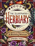 #6: The Illustrated Herbiary: Guidance and Rituals from 36 Bewitching Botanicals