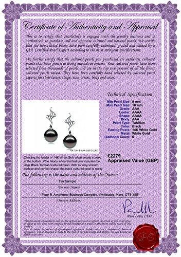 PearlsOnly - Noir 9-10mm AAA-qualité de Tahiti 585/1000 Or Blanc-Boucles d'oreilles en perles