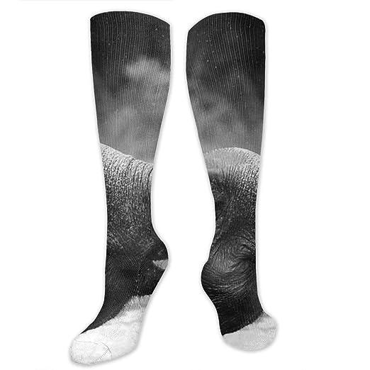 5f9a4289351 Amazon.com  Elephant Design Socks For Women Men Crew Tube Stockings ...
