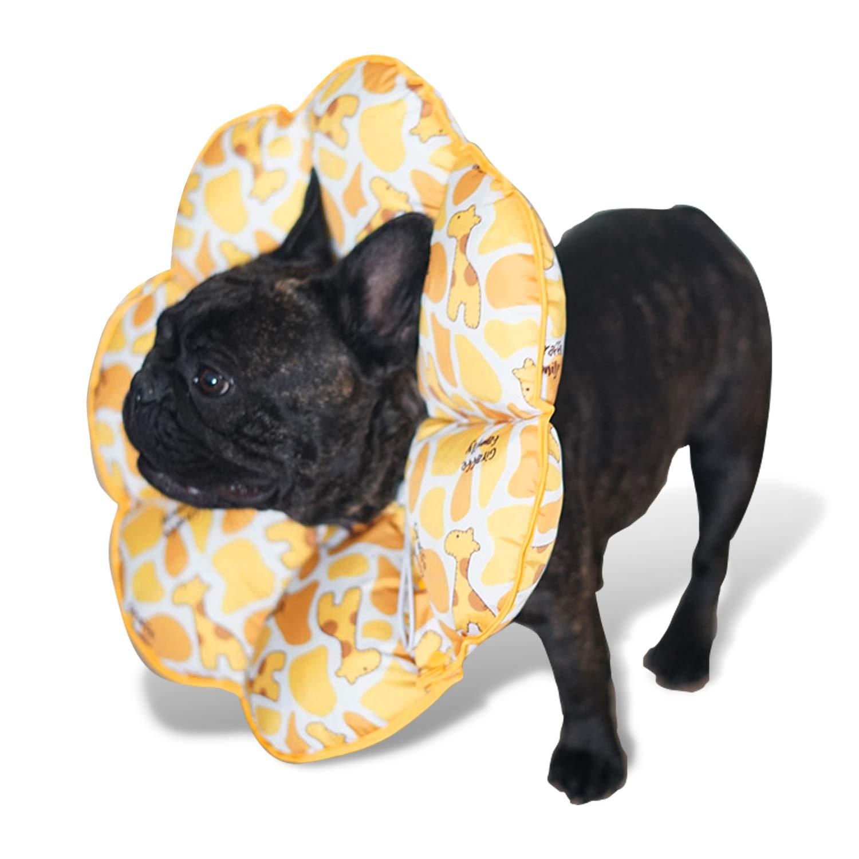 PETCUTE Conos Inflable para Perros Gatos Collar isabelino Inflable para Perro de Recuperación De Mascotas S