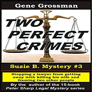 Two Perfect Crimes Audiobook
