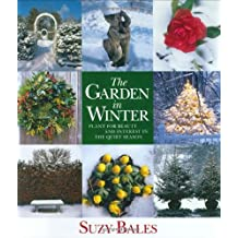 The Garden in Winter: Plant for Beauty and Interest in the Quiet Season