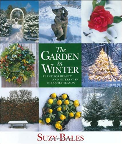 Read The Garden in Winter: Plant for Beauty and Interest in the Quiet Season PDF