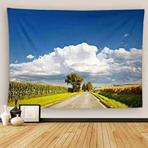 Uoopati Nebraska Tapestry Wall Hanging Landscape Empty Country Road Sunny Day Blue Sky and Trees Highway Wall Art Tapestries Tapestry for Bedroom Room Decor Picnic Mat Beach Bed Cover 60