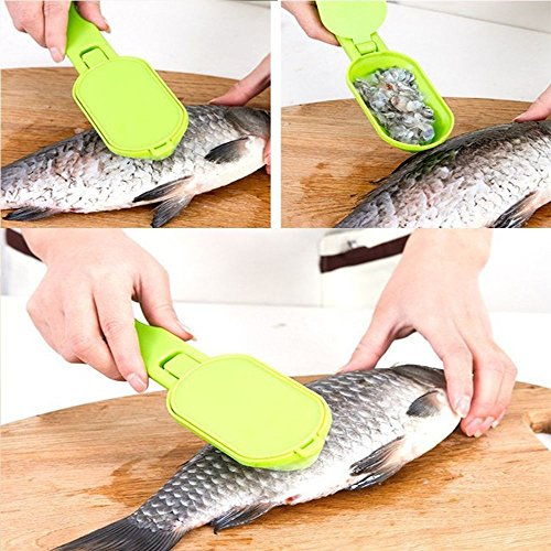 Presentation Scaler (LIAN--Tools New Practical Fish Scaler Clam Opener Scale Scraper Kitchen Accessories)