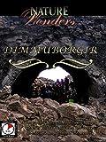Nature Wonders - Dimmuborgir - Iceland