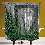 SCOCICI Unique Shower Curtain 3.0 [ Mystic House Decor,Ivy on Wall with Aged Antique Empty Picture Frame as Window Creative Art,Green Charcoal ] Machine Washable,Shower Hooks are Included
