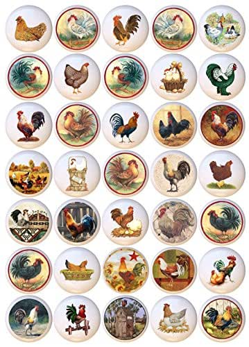 Amazon Com Set Of 35 Knobs Chickens Hens Roosters