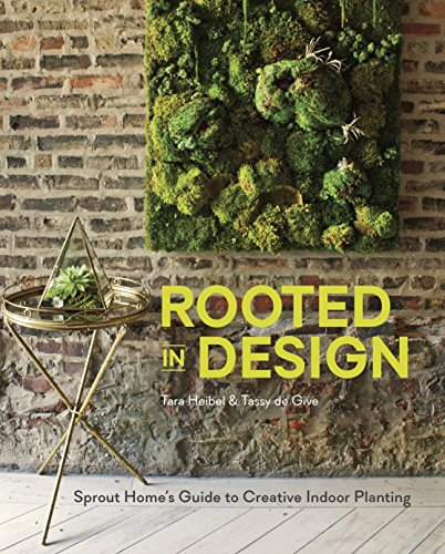 rooted-in-design-sprout-homes-guide-to-creative-indoor-planting