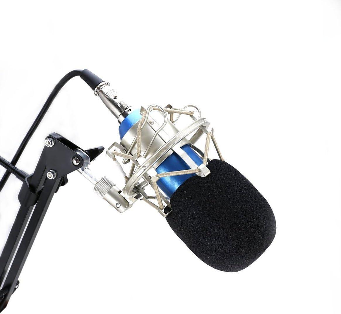 Prima05Sally Microfono a condensatore da Studio Registrazione del Suono Supporto per Braccio vocale dinamico cablato Audio per trasmissioni Radio in Diretta KTV Karaoke