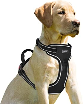 Petacc Adjustable Outdoor Pet Reflective Vest Dog Walking Harness