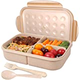 NuSense Bento Box for Adults Wheat Lunch box for Kids 3 Compartments Anti-Leakage Food Container Microwave Safe (Wheat)