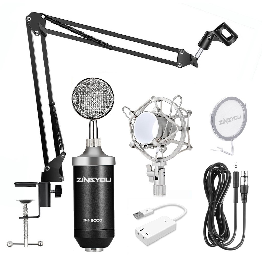 ZINGYOU BM-8000 Professional Studio Condenser Microphone Set, XLR Condenser Mic Bundle for Recording (Black) by ZINGYOU