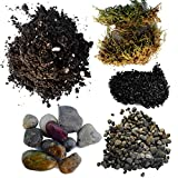 Succulent Planter Soil Kit - Total DIY Terrarium Supplies -Terrarium Kit for Succulent or Catcus - Create your own Terrarium With These Top Quality Supplies - Great For Fairy Gardens (Small)