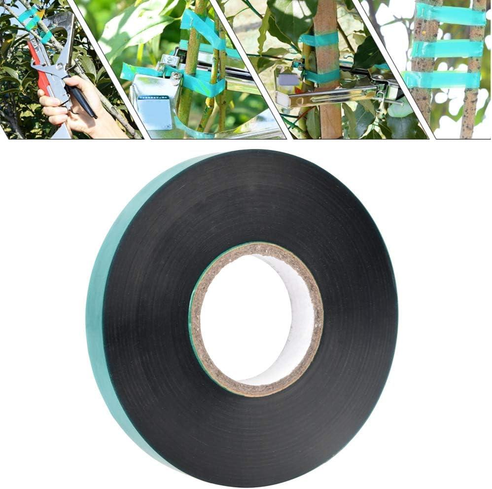 Direction g/én/érale des plantes liens souples r/églables pour plantes courroie de greffe darbres fruitiers pour plantes de jardin ruban de cravate en PVC large et extensible