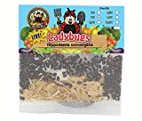 300 Live Ladybugs - Good Bugs - Ladybugs - Guaranteed Live Delivery!