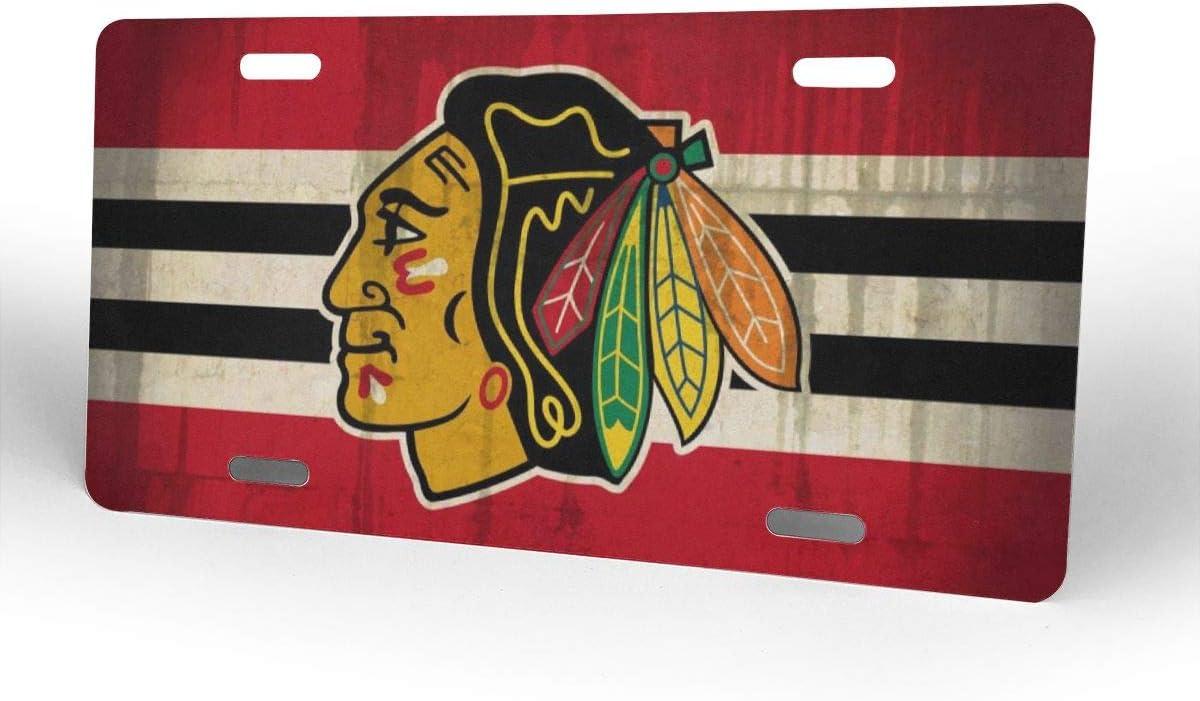 Greicmn Chicago Sport Teams License Plate Frame Decorative License Plate Holder