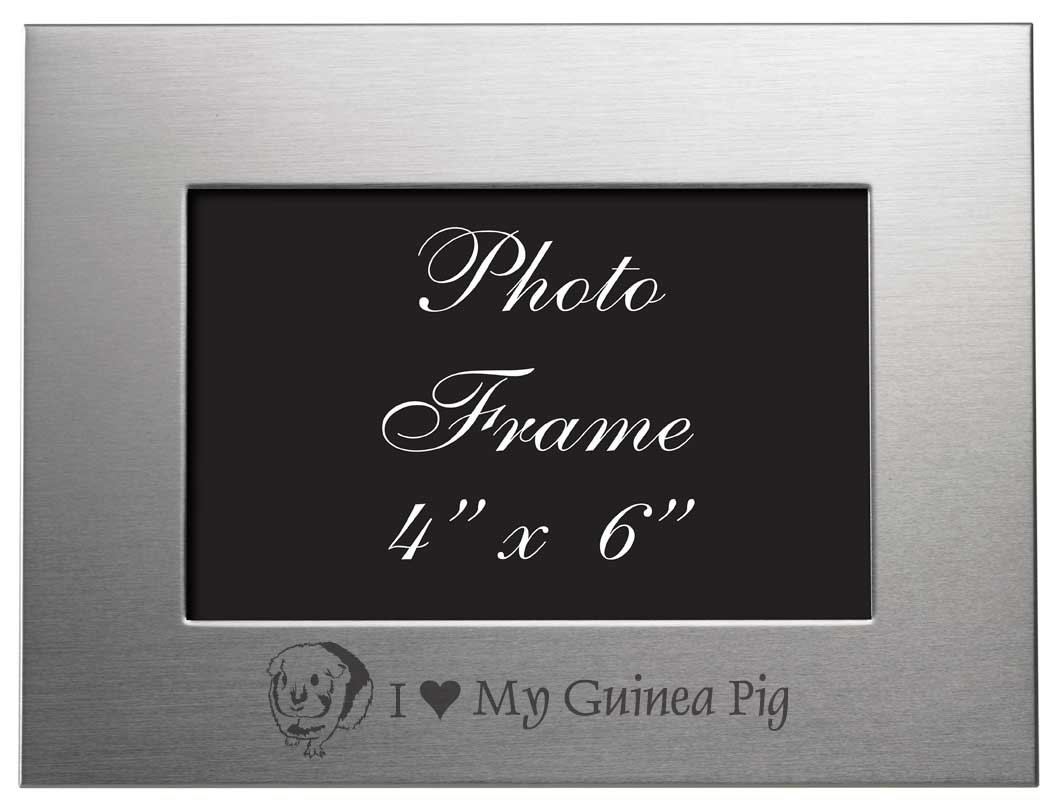 Amazon 4x6 brushed metal picture frame i love my guinea amazon 4x6 brushed metal picture frame i love my guinea pig single frames baby jeuxipadfo Gallery