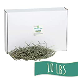 Orchard Grass Hay | Small Pet Select