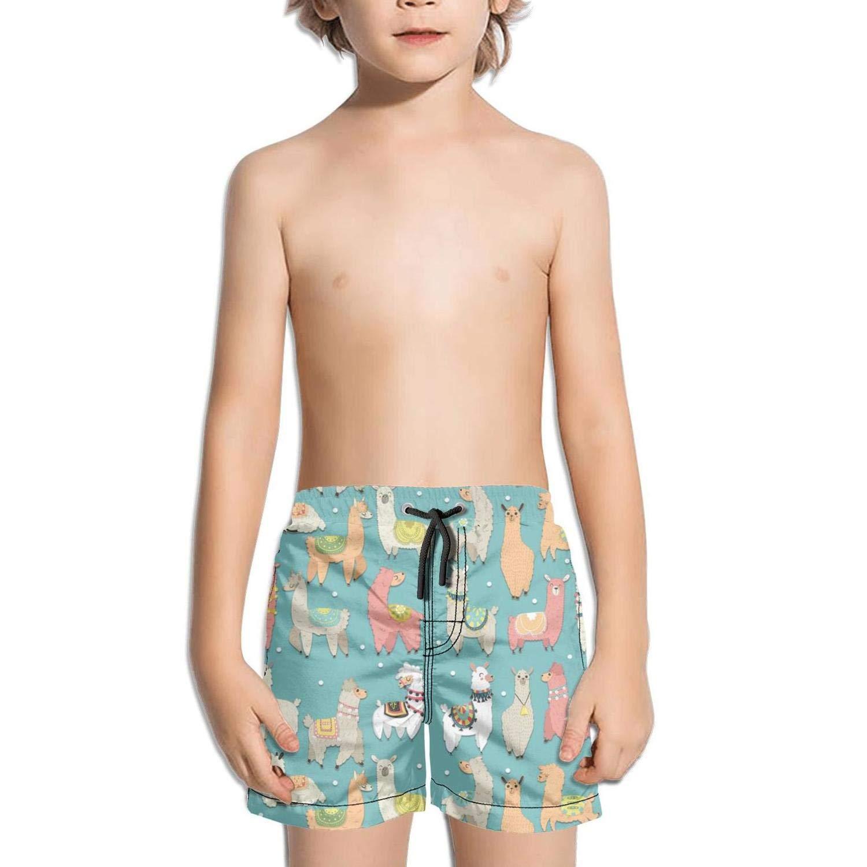 Artist Llama Heart Toddler Little Boys Swim Trunks Quick Dry Water Beach Shorts