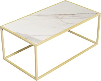 Arterki Modern Coffee Table with Steel Frame