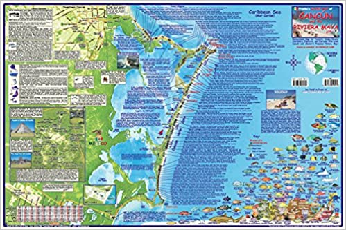 Cancun & Riviera Maya Mexico Adventure & Dive Map Laminated Poster ...
