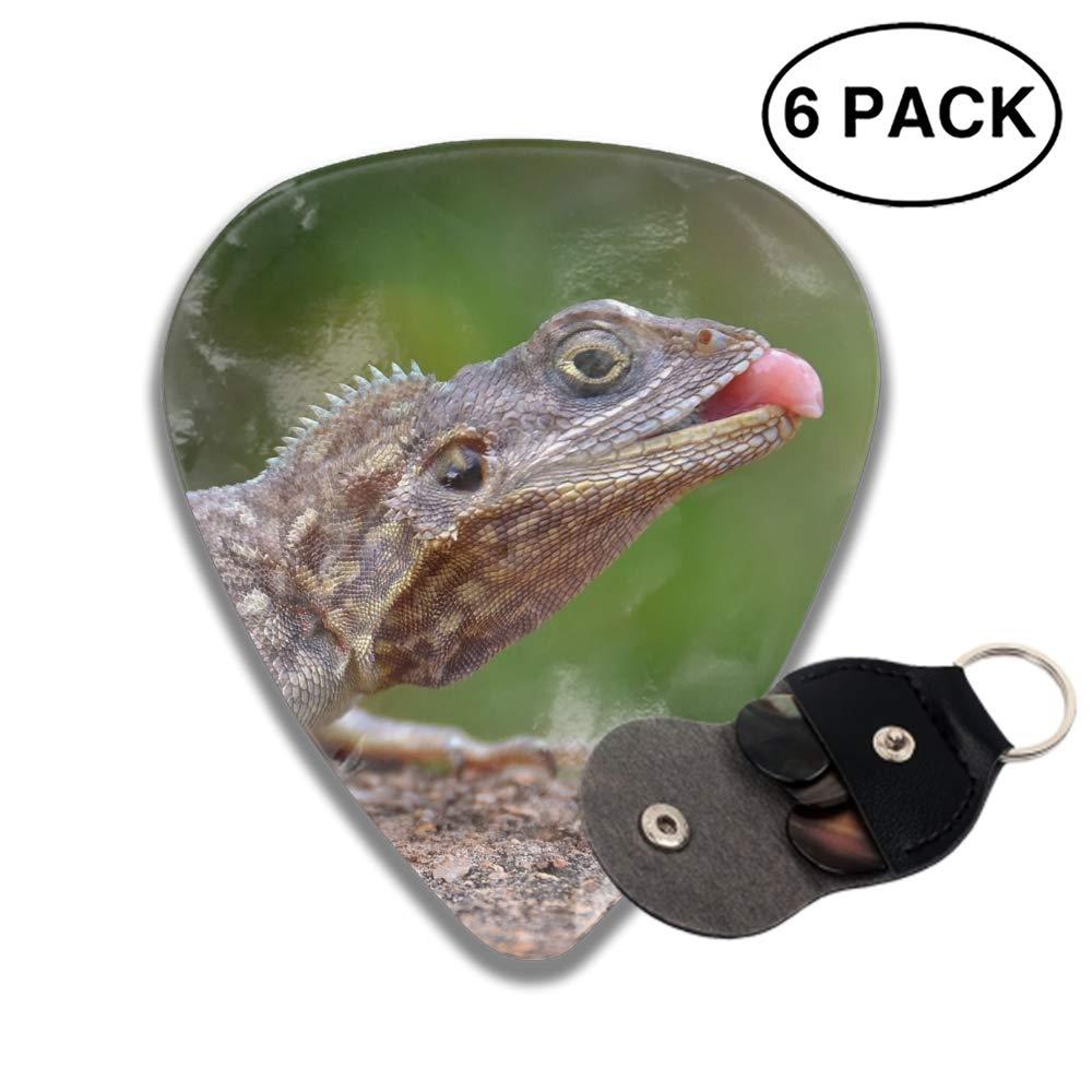 Amazon com: Shape Animal Python Snakes Eye Plectrum Classic