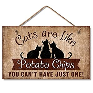 Cats Are Like Potato Chips Humorous Sign