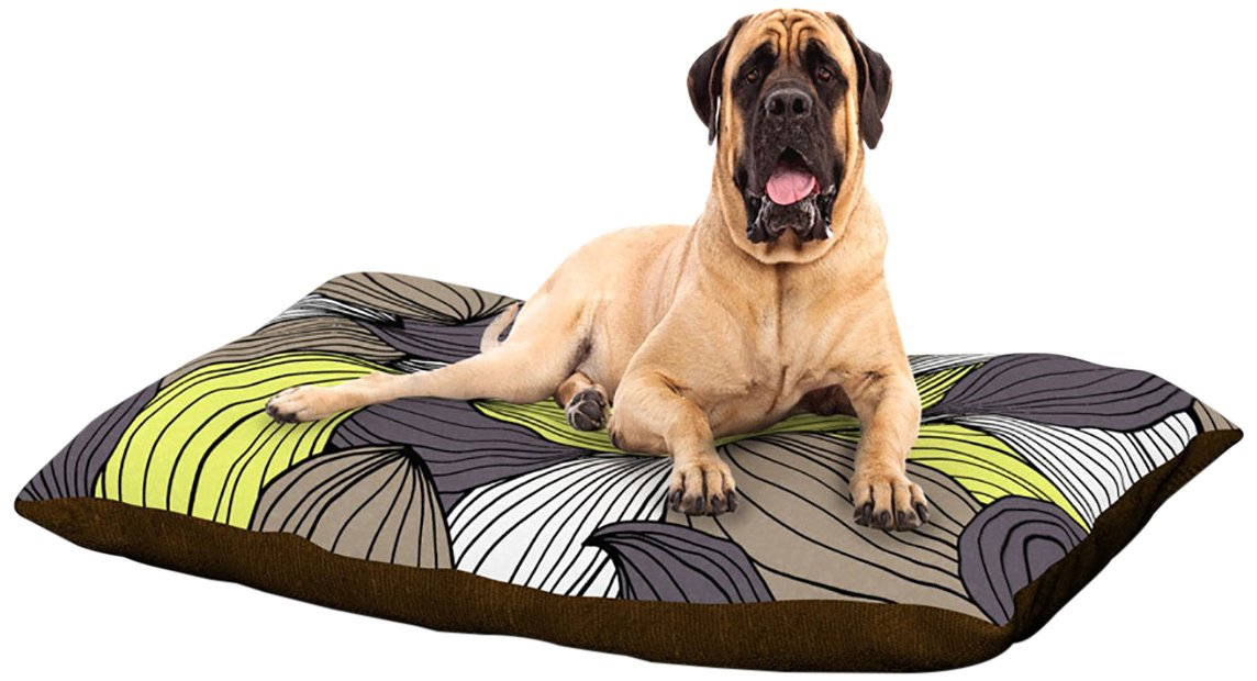 X-Large 40\ Kess InHouse Gabriela Fuente Wild Brush  Fleece Dog Bed, 30 by 40-Inch