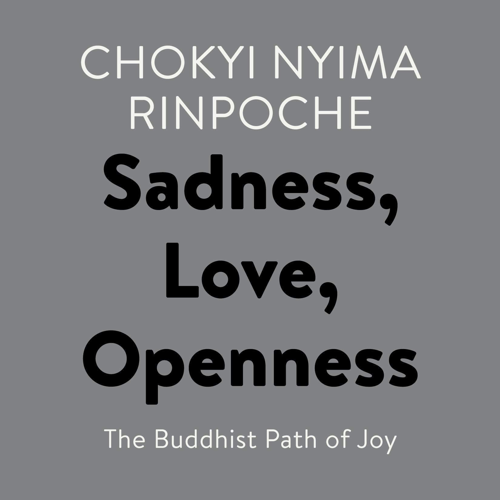 Sadness Love Openness  The Buddhist Path Of Joy