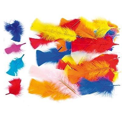 150 pcs Plumas de colores para manualidades que los niños pueden añadir a collages, modelos, sombreros y disfraces (por pack).: Hogar
