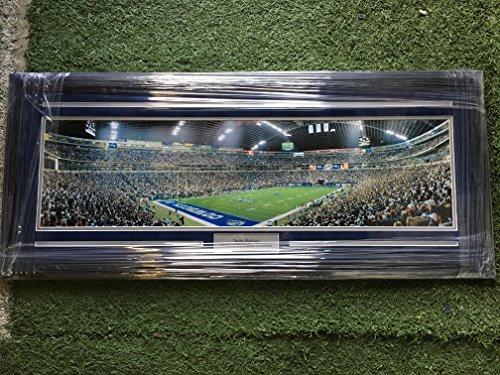 Dallas Cowboys Texas Stadium Field Large Custom Framed Panoramic Picture (Dallas Cowboys Texas Stadium Framed)