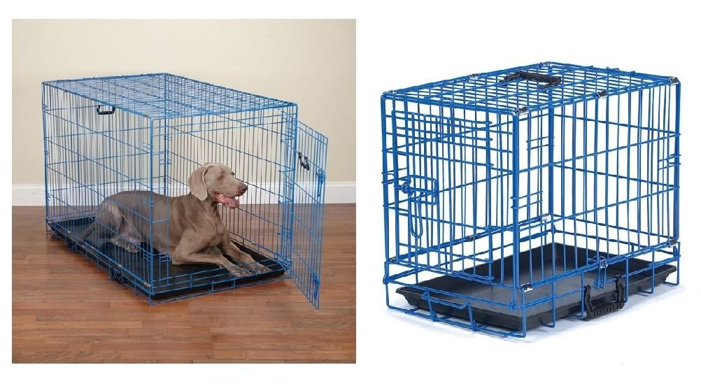 Fashion Color Blue Splash Dog Crate Appeal Training Crates For Dogs Choose Size