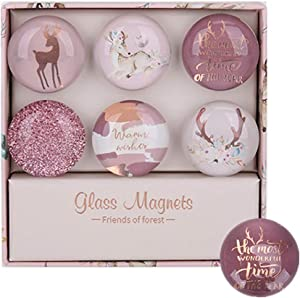 Pink Deer Fridge Magnets 6 Pack Round Glass Refrigerator Magnet Sticker, Use at Home Kitchen School Office for Refrigerator Dry Erase Board and Whiteboard Gift Idea (Pink Deer Style)