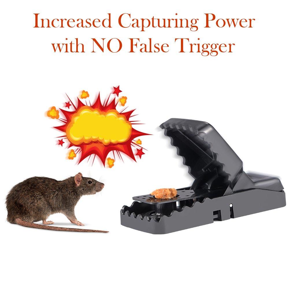 Piège à Souris, Tapette à Rat Réutilisable Souricière avec Ressort Puissant et Sensible Contrôle des Rats Efficace (Lot de 6)