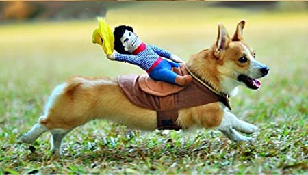 Amazon.com : Angelwing Riding Horse Dog Costume Novelty Funny Party Pet Dog  Costume Large Dog Clothes Cowboy Dog Clothing S-XL (S) : Pet Supplies