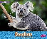 Koalas: A 4D Book (Australian Animals)