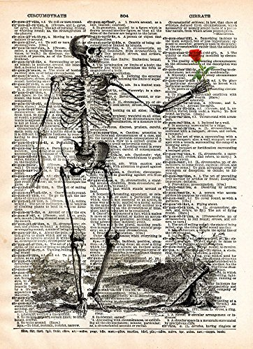 Skeleton holding rose print on vintage dictionary page, love never dies art -