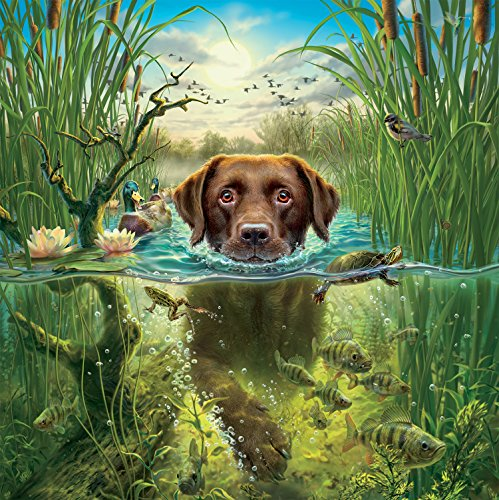 - Ceaco Mark Fredrickson Water's Edge Jigsaw Puzzle (550 Piece)