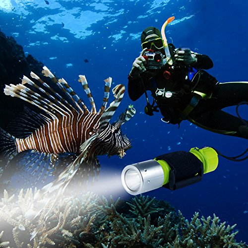 Cree Led Dive Light