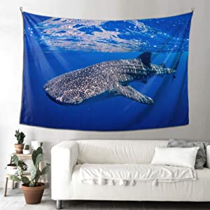 WHIOFE Kids Tapestry Philippine Whale Shark Tapestry for Wall Picnic Tapestry 90x60 Inches(229x152cm) Wall Hanging Art Home for Living Room Bedroom