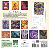 Alex Grey 2017 Wall Calendar