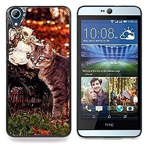 """Curl Americano Shorthair gato Manx"""" - Metal de aluminio y de plástico duro Caja del teléfono - Negro - HTC Desire 626 626w 626d 626g 626G dual sim"""