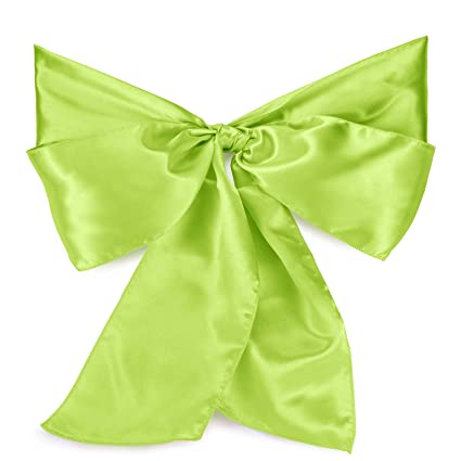 Outstanding Amazon Com Lanns Linens 10 Elegant Satin Wedding Party Pabps2019 Chair Design Images Pabps2019Com